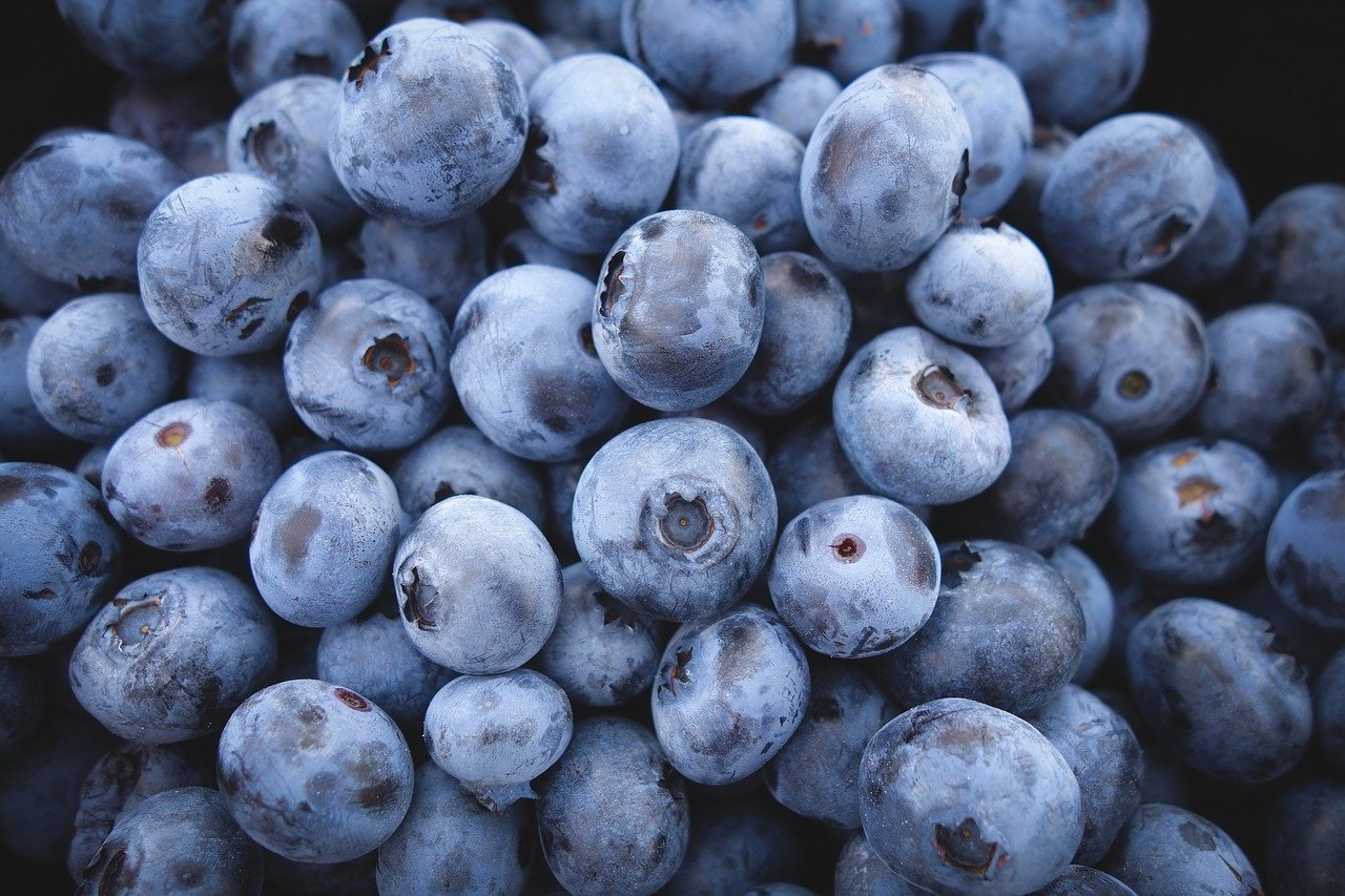 blueberries are the perfect snack